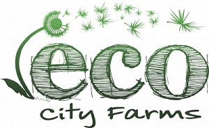 ECO City Farms